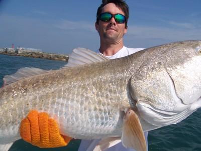 Fishing charter daytona new smyrna beach for New smyrna beach fishing report