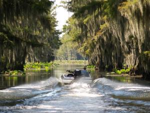 Caddo lake cooler water temps for Caddo lake fishing report