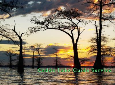 Caddo lake summertime report for Caddo lake fishing report